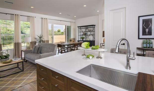 DSC_9748B Kitchen open to family room