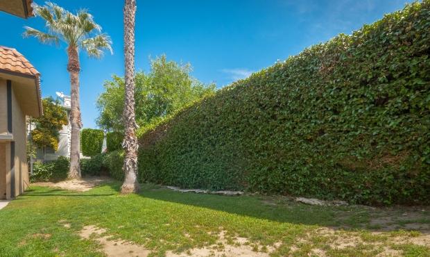 13 - Green Wall