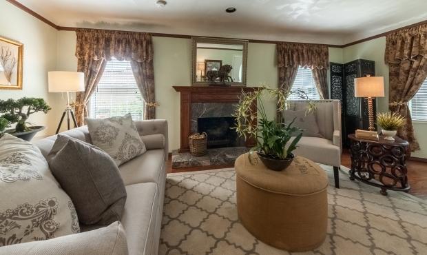4 - Living Room fireplace