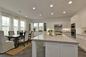 Modern, open kitchen with natural light - ready for a springtime buyer.